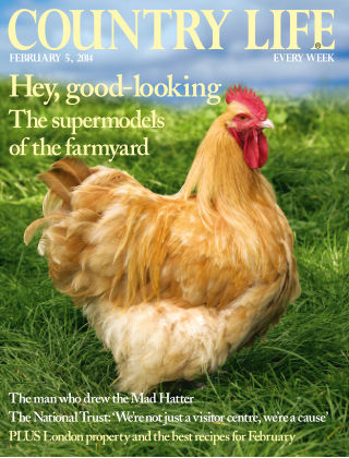 Country Life 5 February 2014
