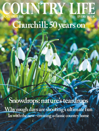 Country Life 7th January 2015
