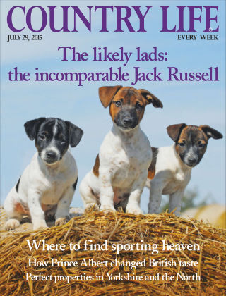 Country Life 29th July 2015