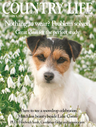 Country Life 3rd February 2016