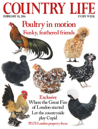 Country Life 10th February 2016