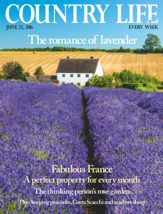Country Life 22nd June 2016