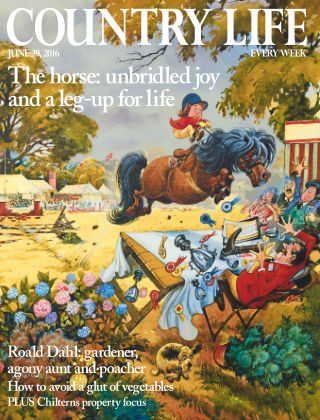 Country Life 29th June 2016