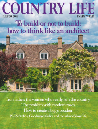 Country Life 20th July 2016
