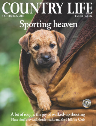 Country Life 26th October 2016