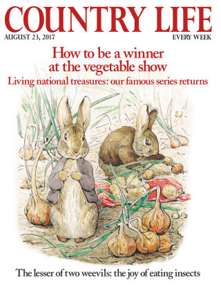 Country Life 23rd August 2017