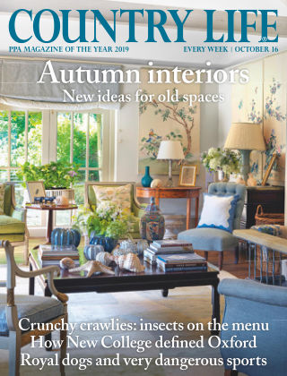 Country Life 16th October 2019