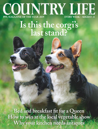 Country Life 21st August 2019