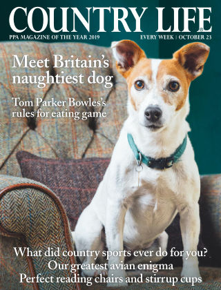 Country Life 23rd October 2019