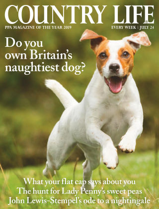 Country Life 24th July 2019