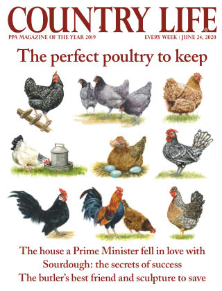 Country Life 24th June 2020