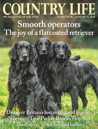 Country Life 8th Jan 2020