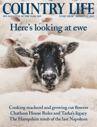 Country Life 12th August 2020