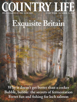 Country Life 21st October 2020