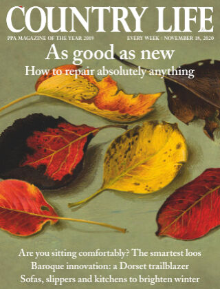 Country Life 18th November 2020