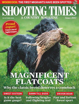 Shooting Times & Country Magazine Oct 30 2019