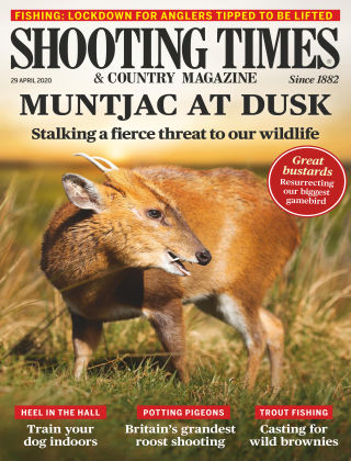 Shooting Times & Country Magazine Apr 29 2020