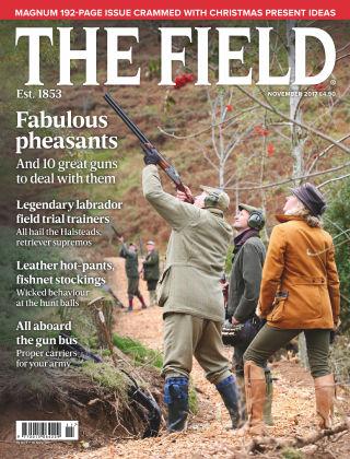 The Field Nov 2017