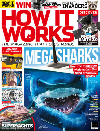 How It Works Issue 114