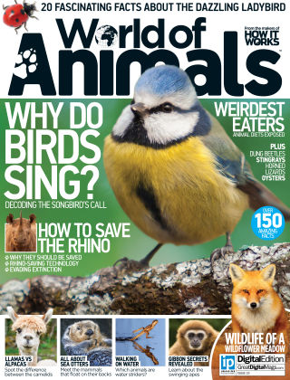 World of Animals Issue 023