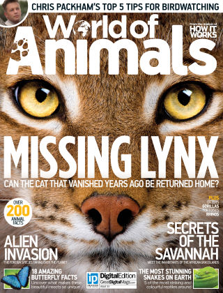 World of Animals Issue 033
