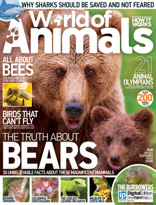World of Animals Issue 036