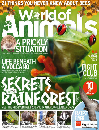 World of Animals Issue 48