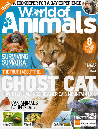 World of Animals Issue 51