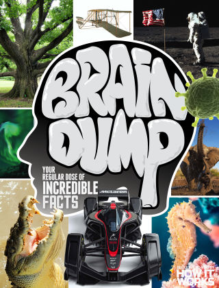 Brain Dump Issue 033