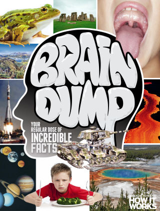 Brain Dump Issue 034