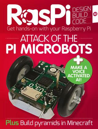 Raspi Issue 042
