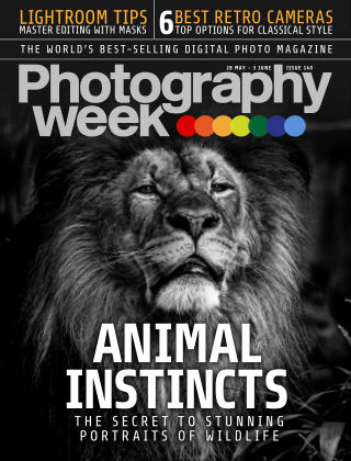 Photography Week  28 May 2015