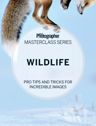 Digital Photographer Masterclass Series Wildlife