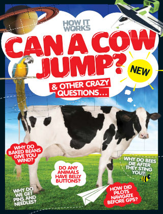 Can A Cow Jump? 1st Edition