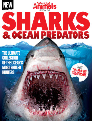 World Of Animals Book Of Sharks & Ocean Predators 1st Edition