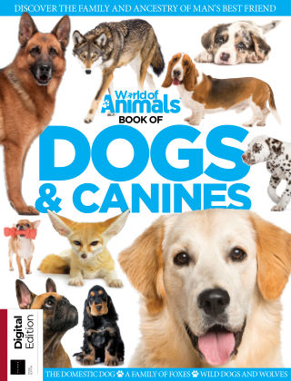 World Of Animals Book of Dogs & Canines Third Edition