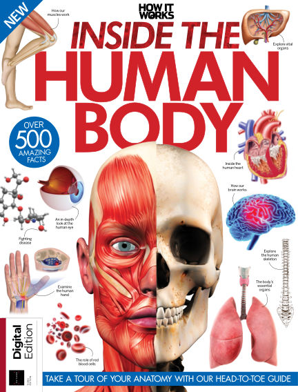 How It Works - Inside the Human Body November 26, 2018 00:00