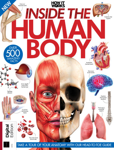 How It Works - Inside the Human Body June 21, 2019 00:00