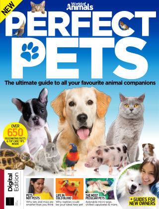 World of Animals Perfect Pets 1st Edition