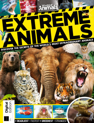 World of Animals Extreme Animals 1st Edition