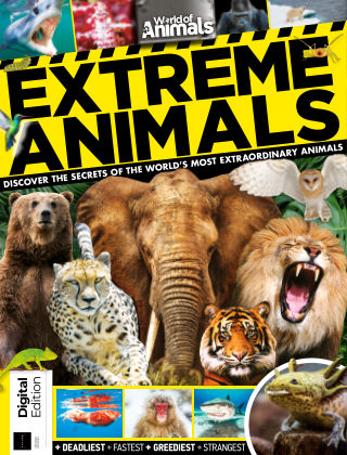 World of Animals Extreme Animals Second edition