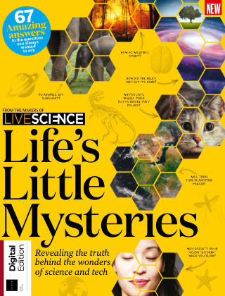 Life's Little Mysteries 1st Edition