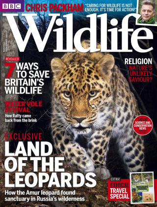 BBC Wildlife Mar 2015
