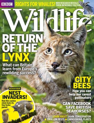 BBC Wildlife Spr 2015