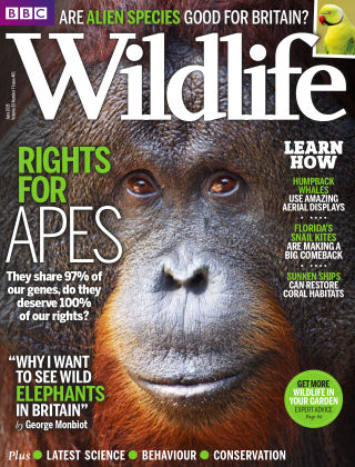 BBC Wildlife Jun 2015