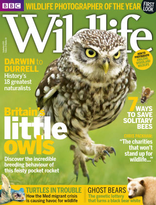 BBC Wildlife Sept 2015