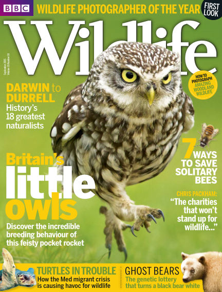 BBC Wildlife September 02, 2015 00:00
