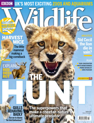 BBC Wildlife Oct 2015