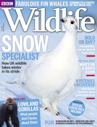 BBC Wildlife Jan 2016