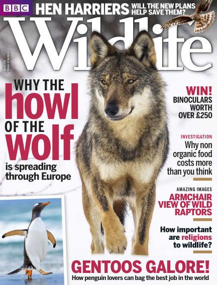 BBC Wildlife February 08, 2016 00:00